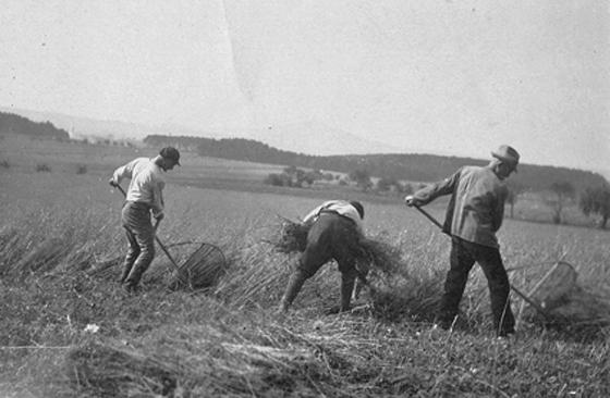Auf einer Hachschara in Deutschland (1920er Jahre)