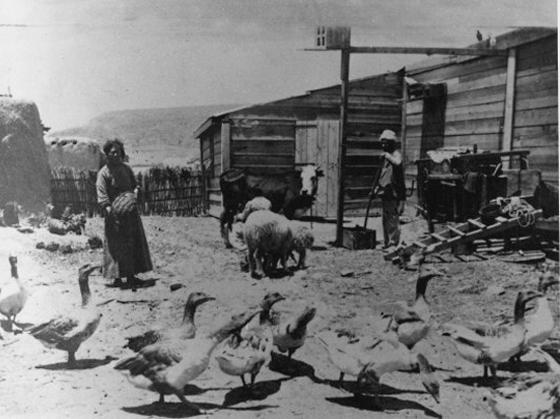 Der Kibbuz Degania in der Anfangszeit. Foto: Archiv Degania