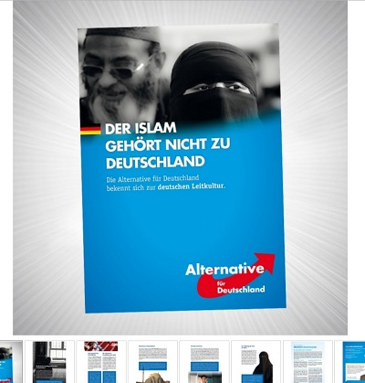 Flyer der AfD, Screenshot AfD Danshop